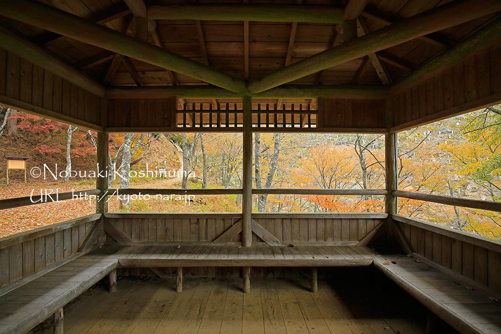 西行庵の向かいには、東屋があります。紅葉のパノラマが楽しめます。