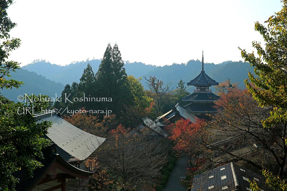 後醍醐天皇が南朝へ逃れてきた時に一時的に建てられた吉野朝宮跡です。