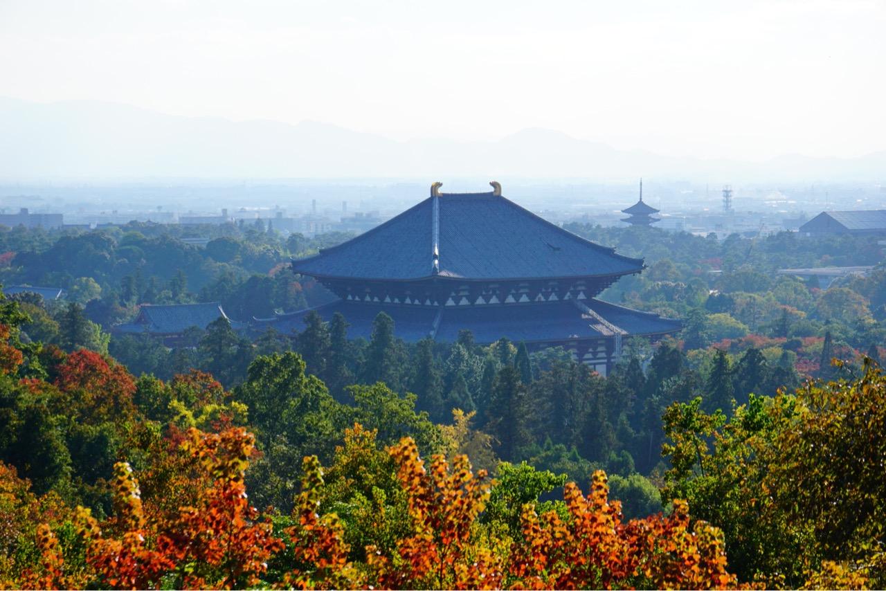 東大寺と興福寺五重塔が見え、絶景です。