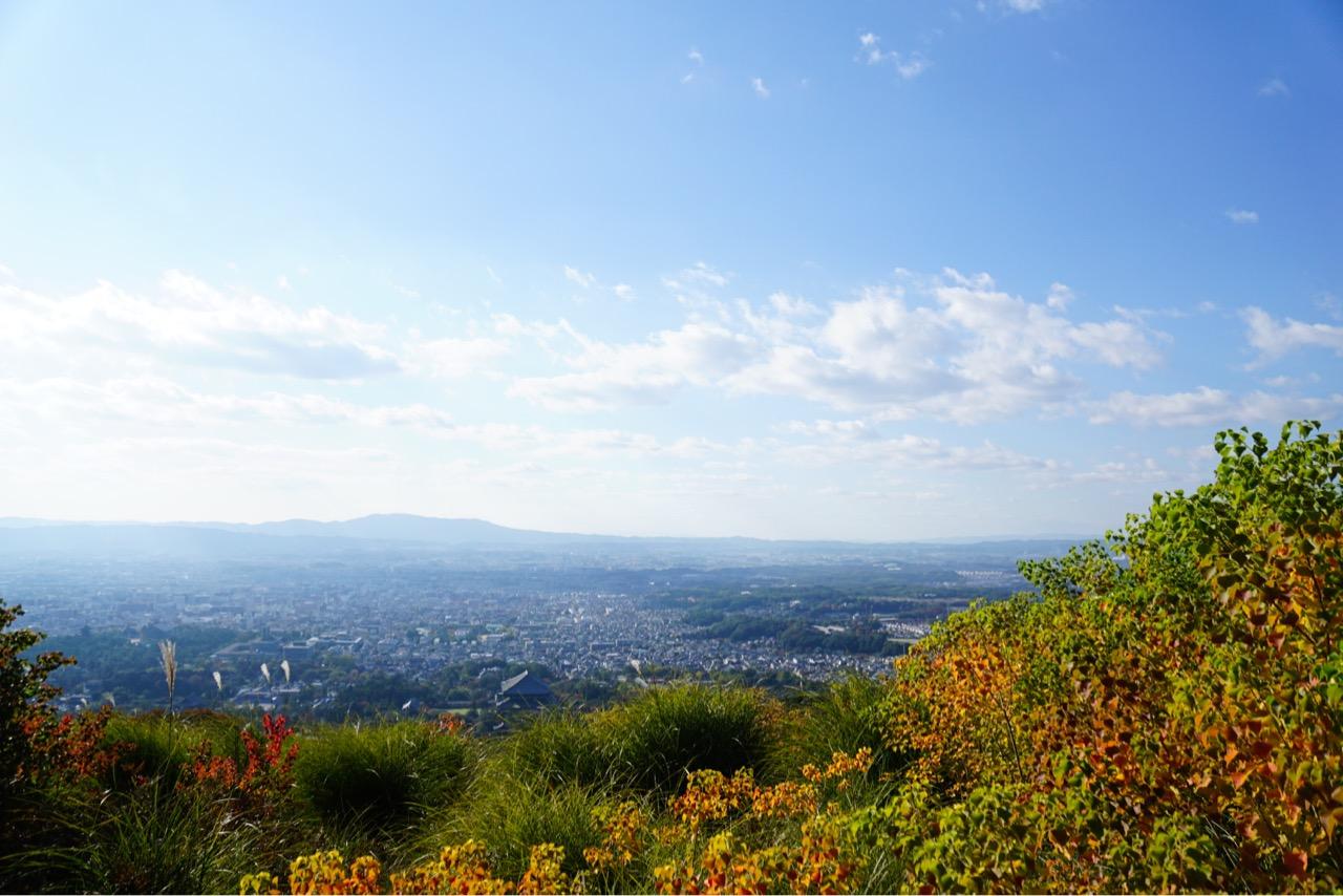 山頂は紅葉とススキがとても綺麗でした。