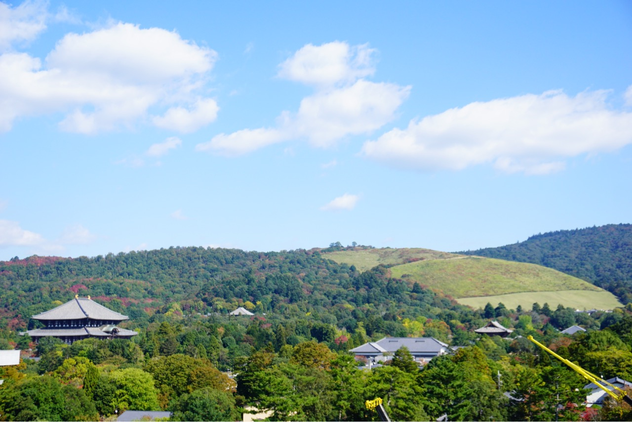奈良県庁展望室からの眺め。若草山、東大寺、興福寺五重塔などを眺めることができます。