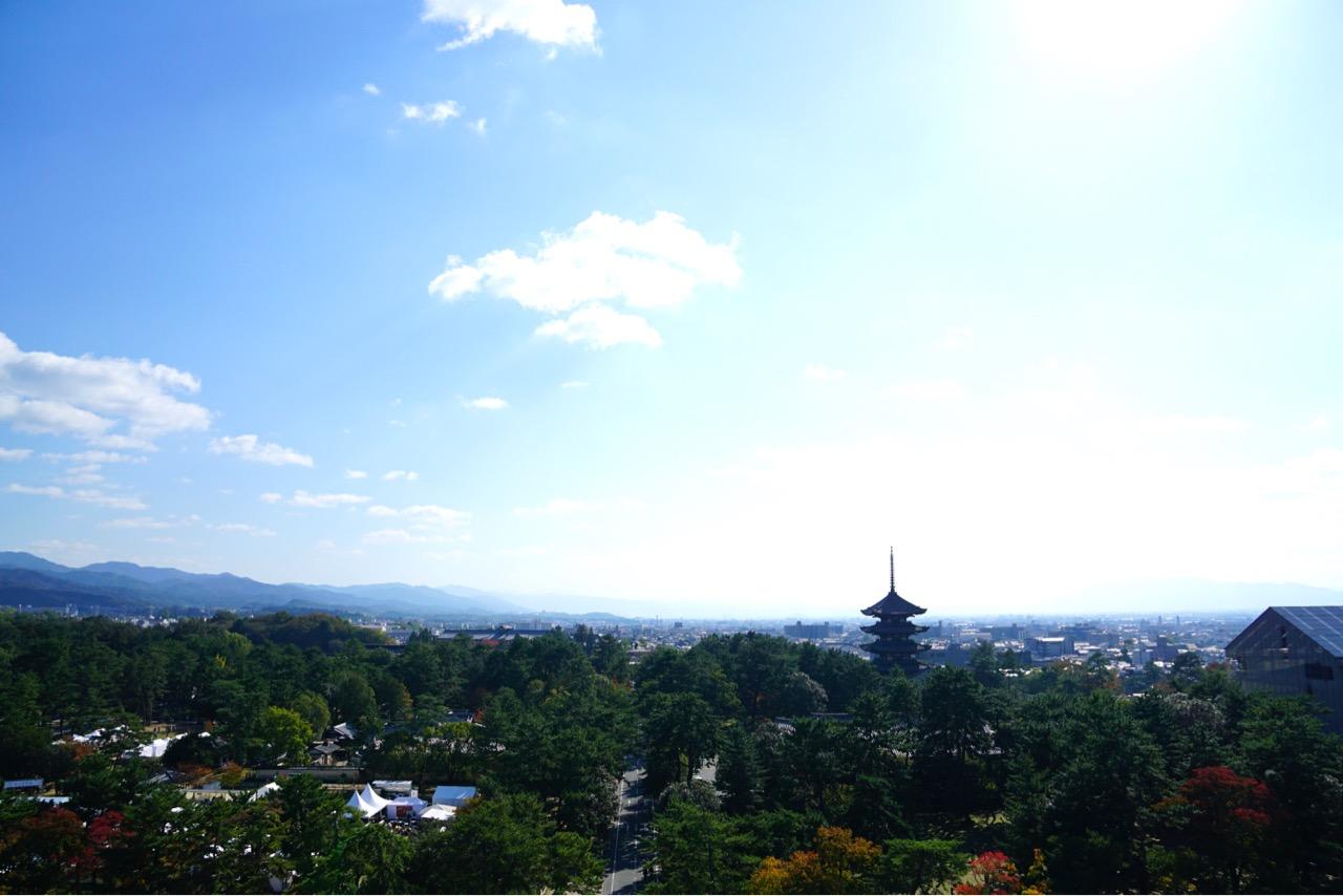 興福寺五重塔と奈良公園。