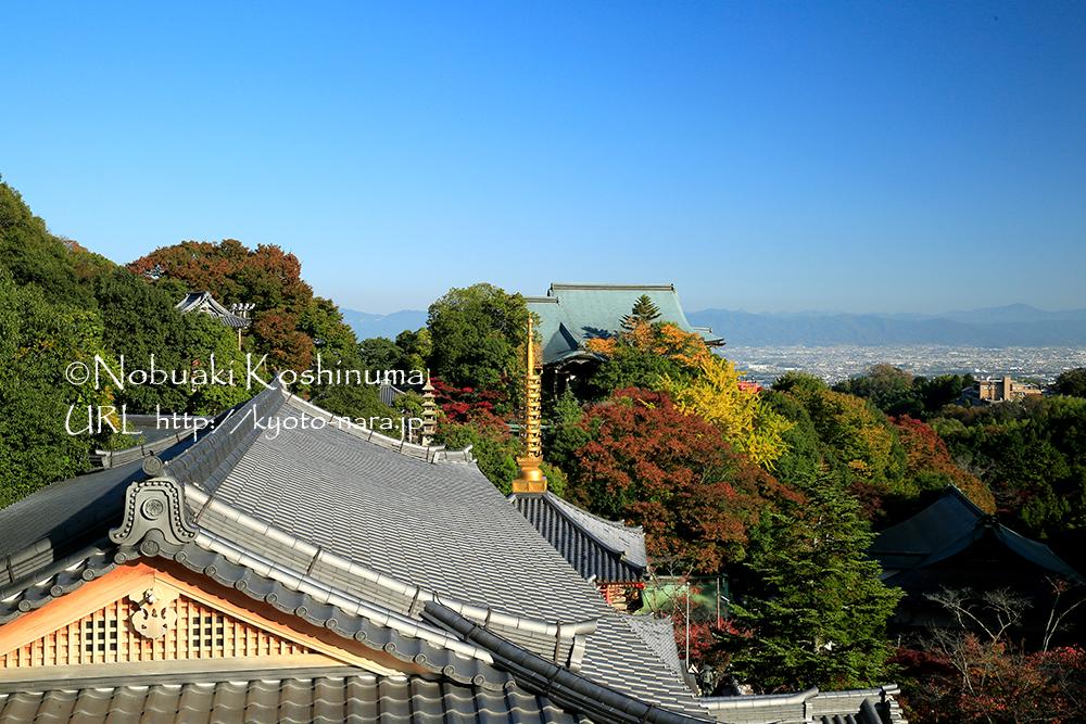 朝護孫子寺は、景色の良い場所がいくつもあるので、坂道も苦になりませんね。