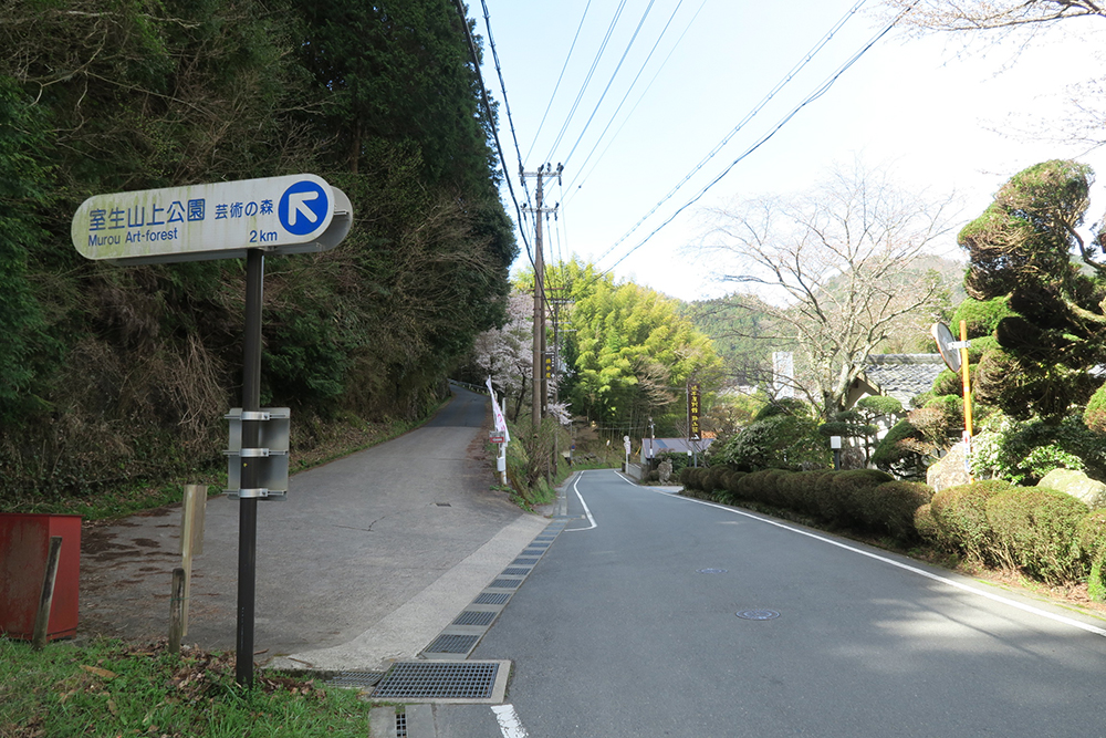 左の坂を上っていくと西光寺のしだれ桜が見れます。徒歩20~30分くらいです。