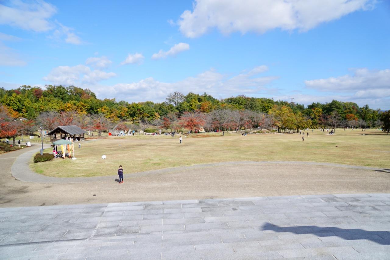 けいはんな記念公園の前も美しいメタセコイヤ並木です。公園内も庭園があり綺麗です。