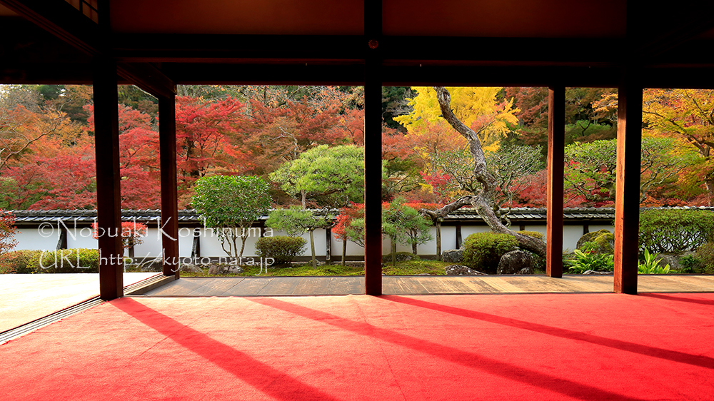 福寿院客殿。