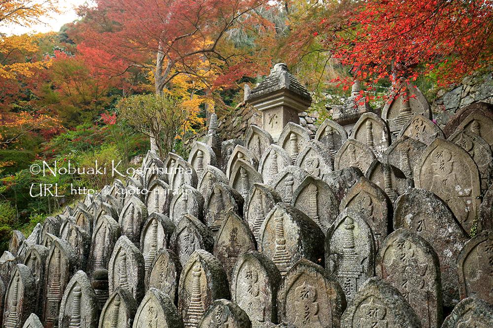 僧侶の墓石群
