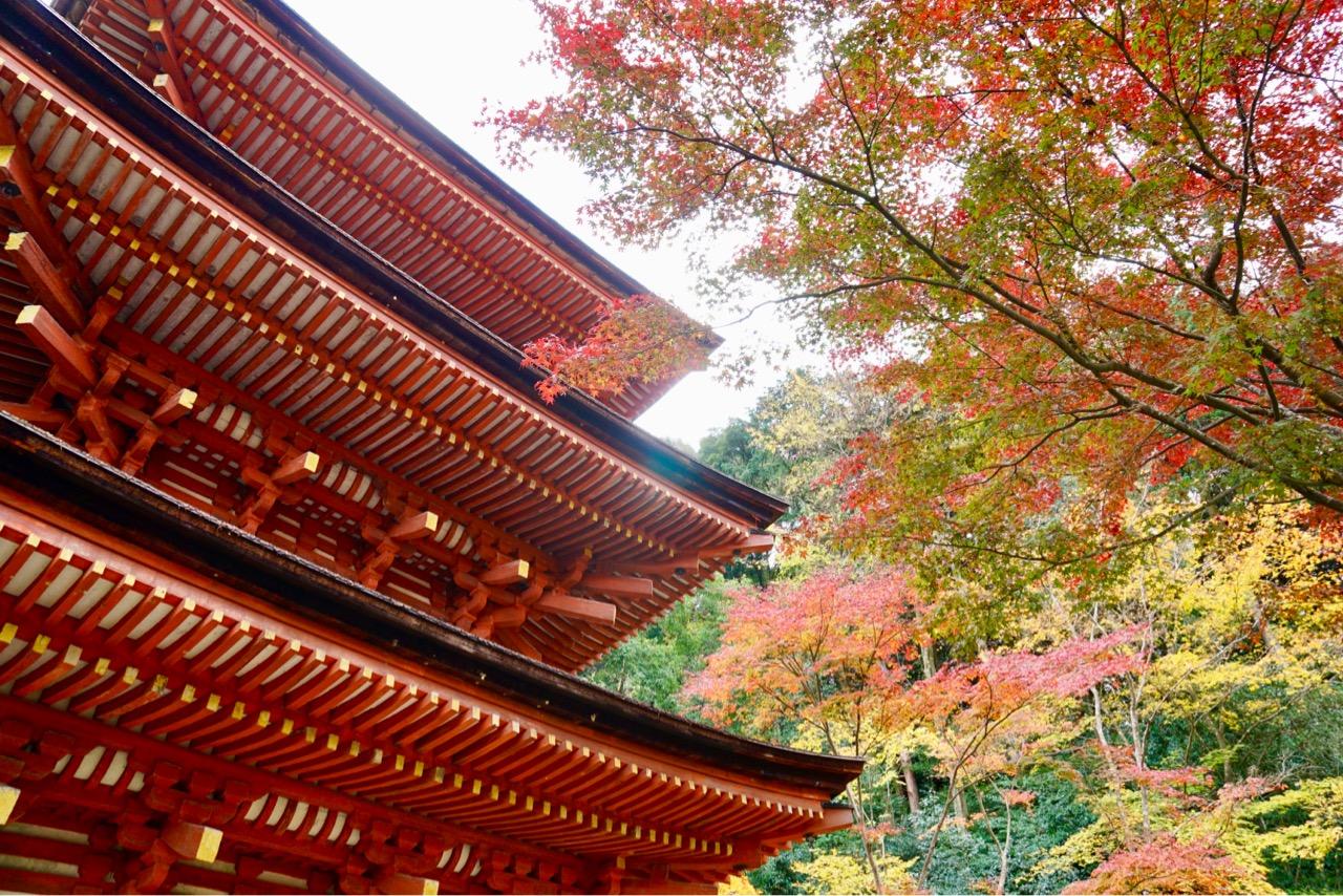 三重塔の紅葉