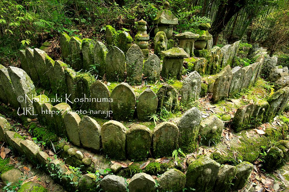 大門石仏群。いろいろな形の石仏が配置されています。