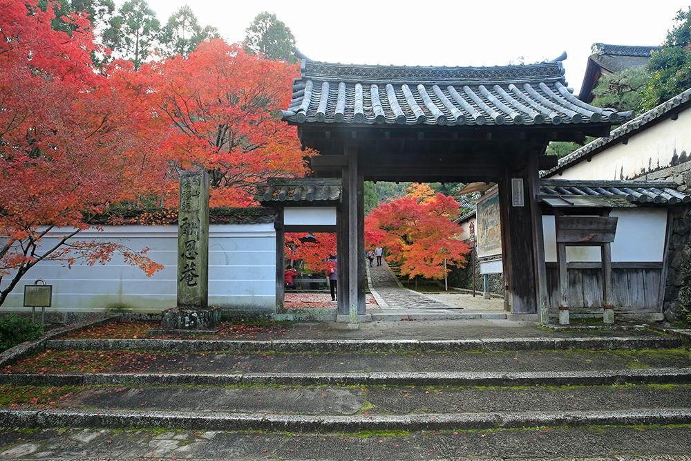 一休寺・総門。紅葉は想像していた何倍もキレイでした!