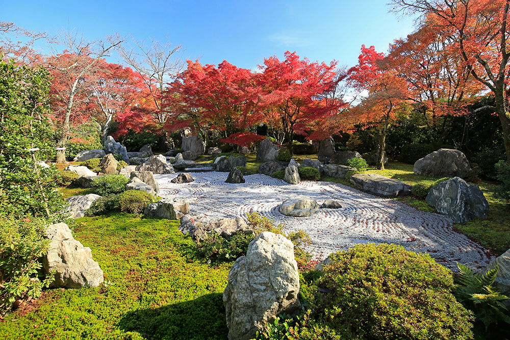 回遊式庭園に枯山水庭園を取り入れたお庭です。