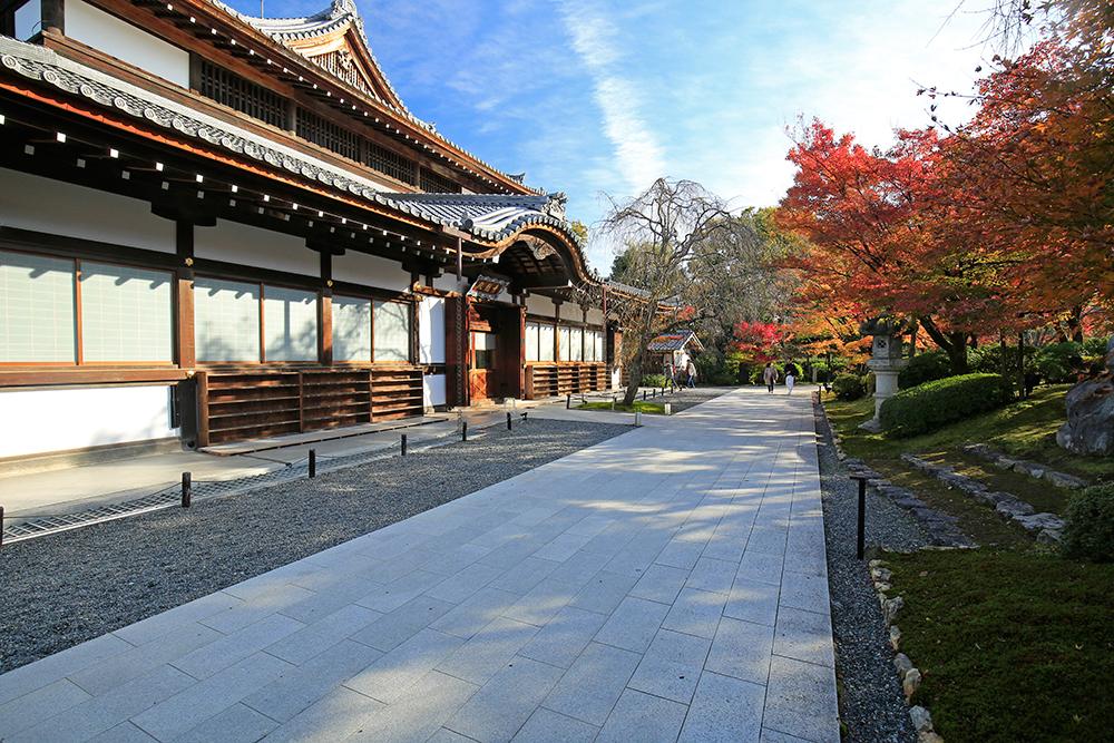 青龍殿。奈良大仏殿のおよそ横幅半分の木造大建築物です。
