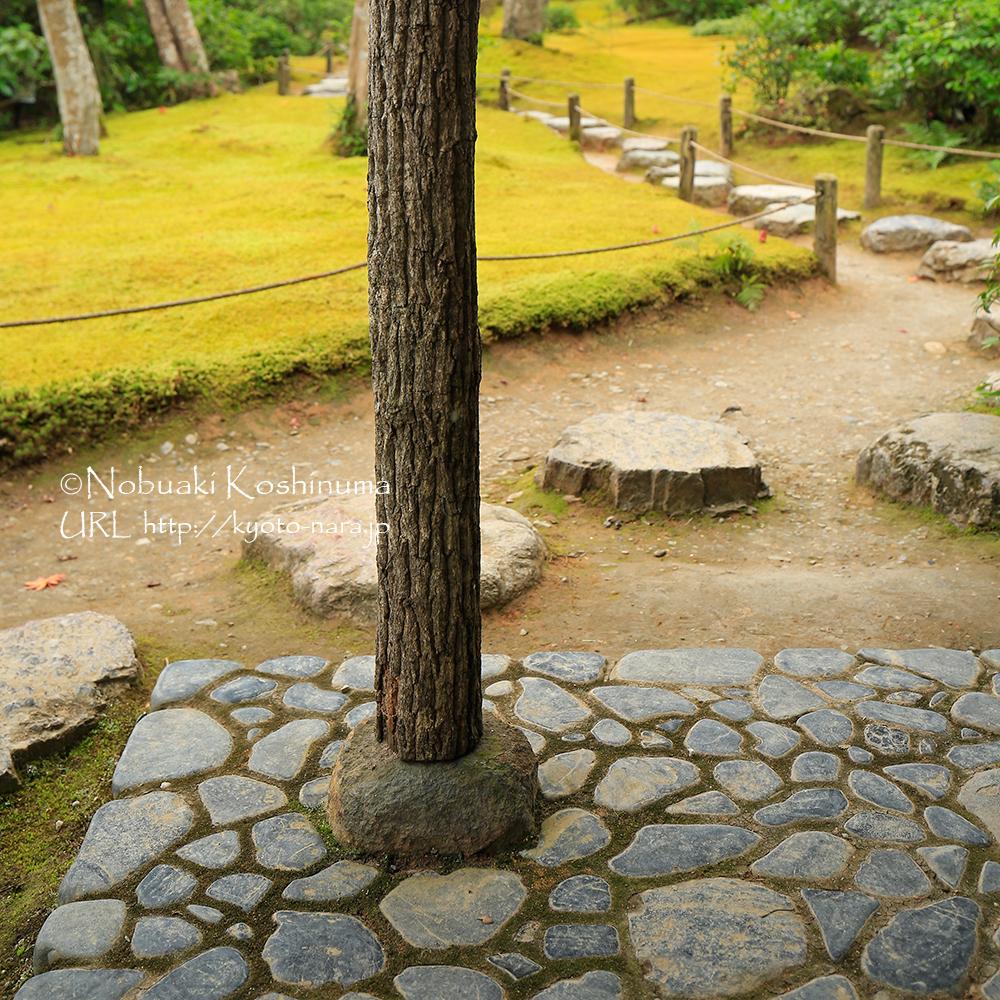 石の上に乗っているだけの柱。アップ写真も撮ってみました。(次の写真 )