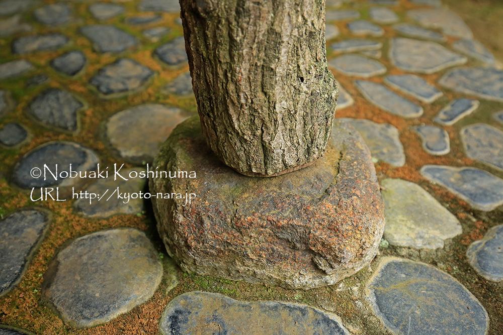 お寺の柱などと同じ工法です。大きな柱になると石の形に合わせて木口を調整するんですよね。。。