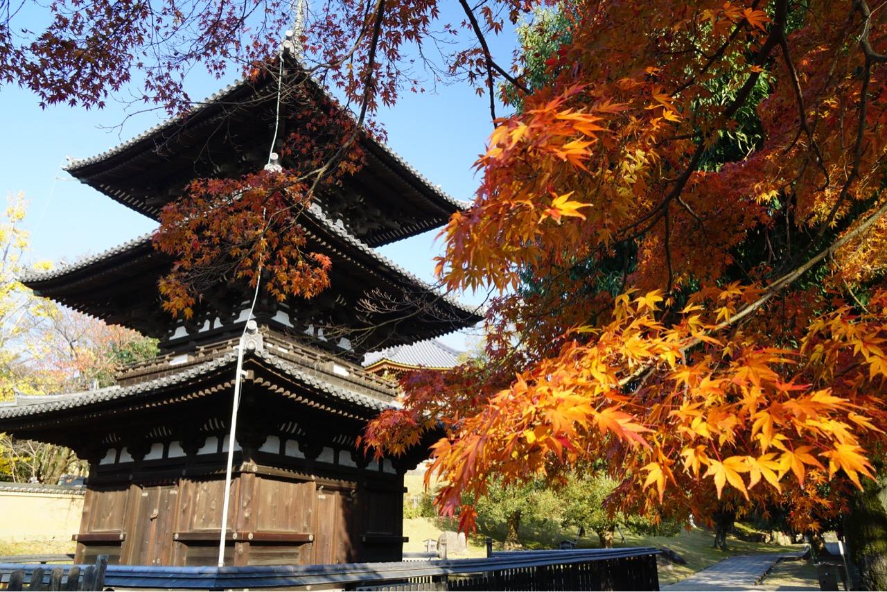 三重塔 オレンジ色の紅葉がとても綺麗で好きです。