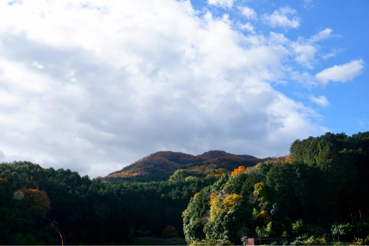 こちらも周辺道路から撮りました。向きが違うと違う山のように見えますね。
