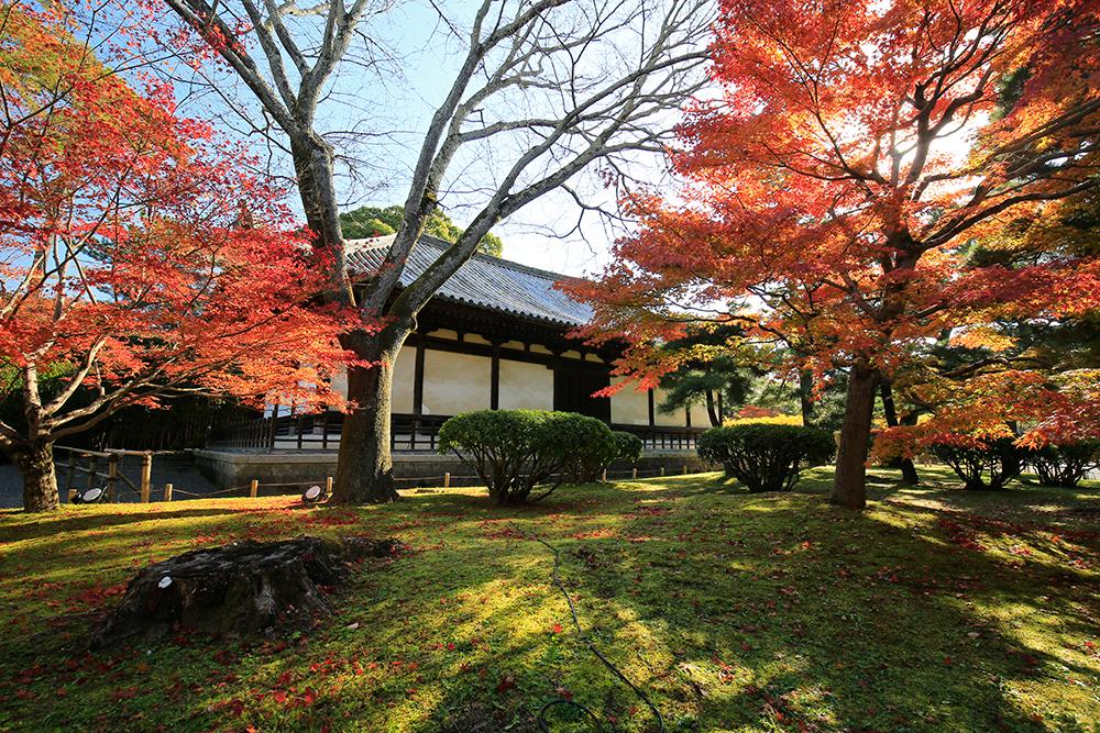 観音堂の周りの紅葉も見事でした。建物は鎌倉時代前期のものと考えられています。