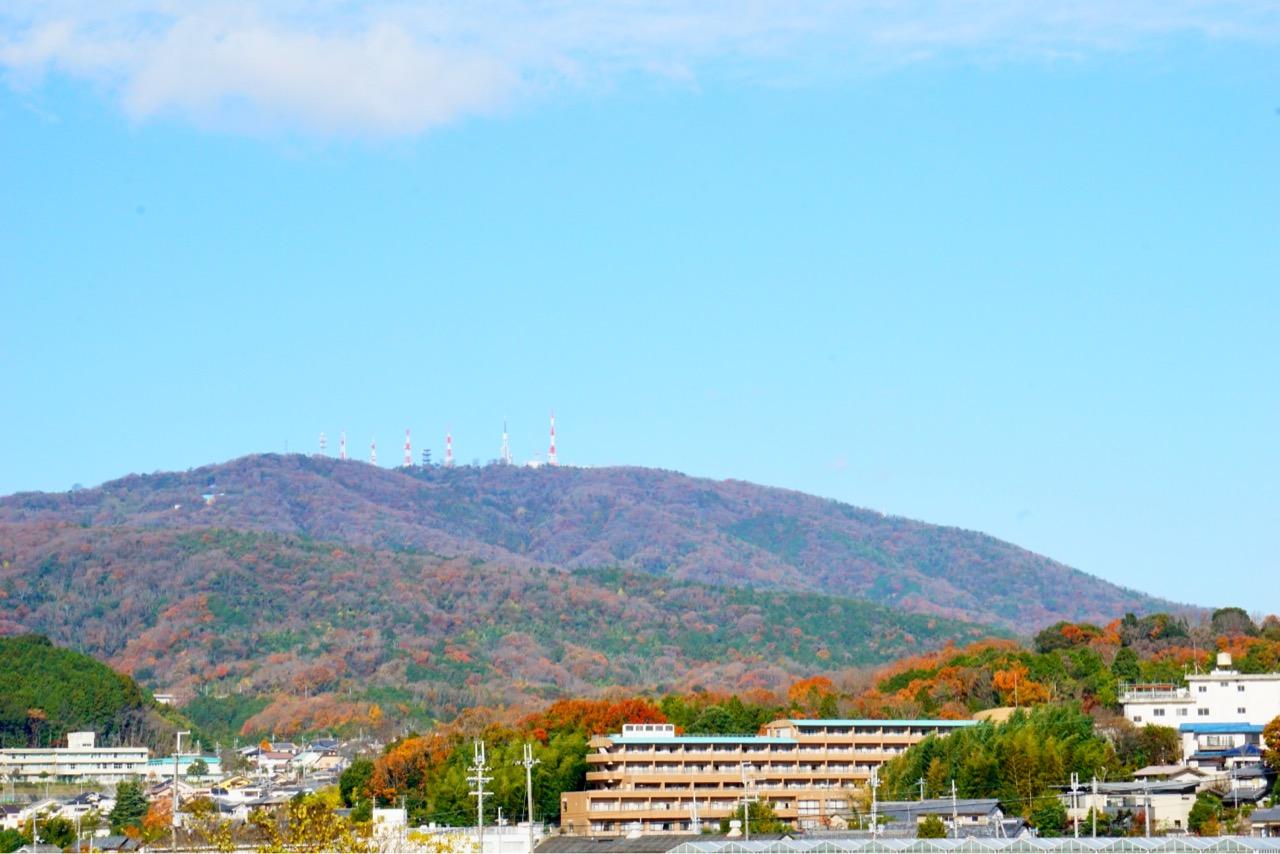 近くから撮った生駒山 今年は紅葉がとても綺麗でした。