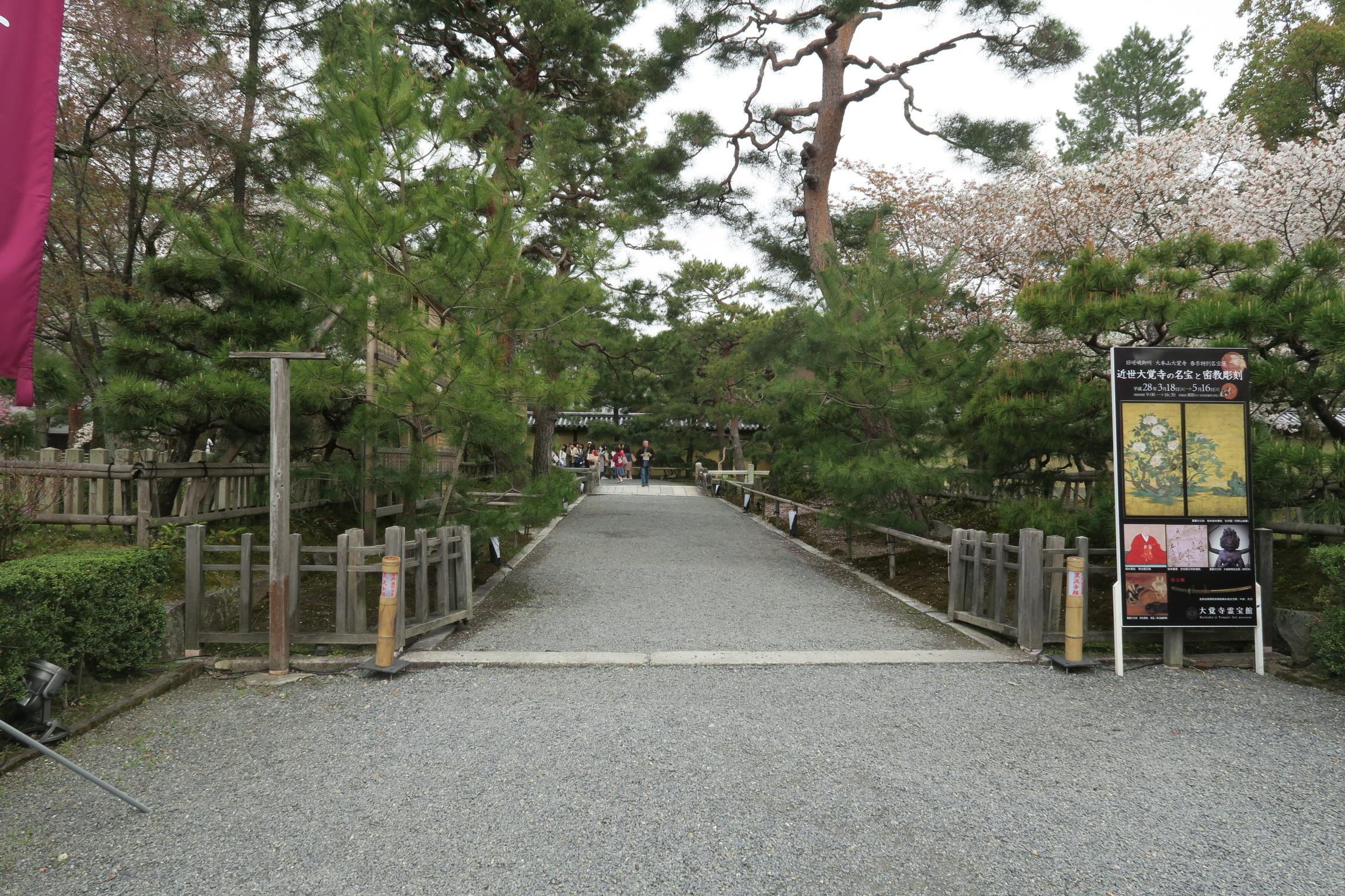 大沢池のあとは大覚寺。