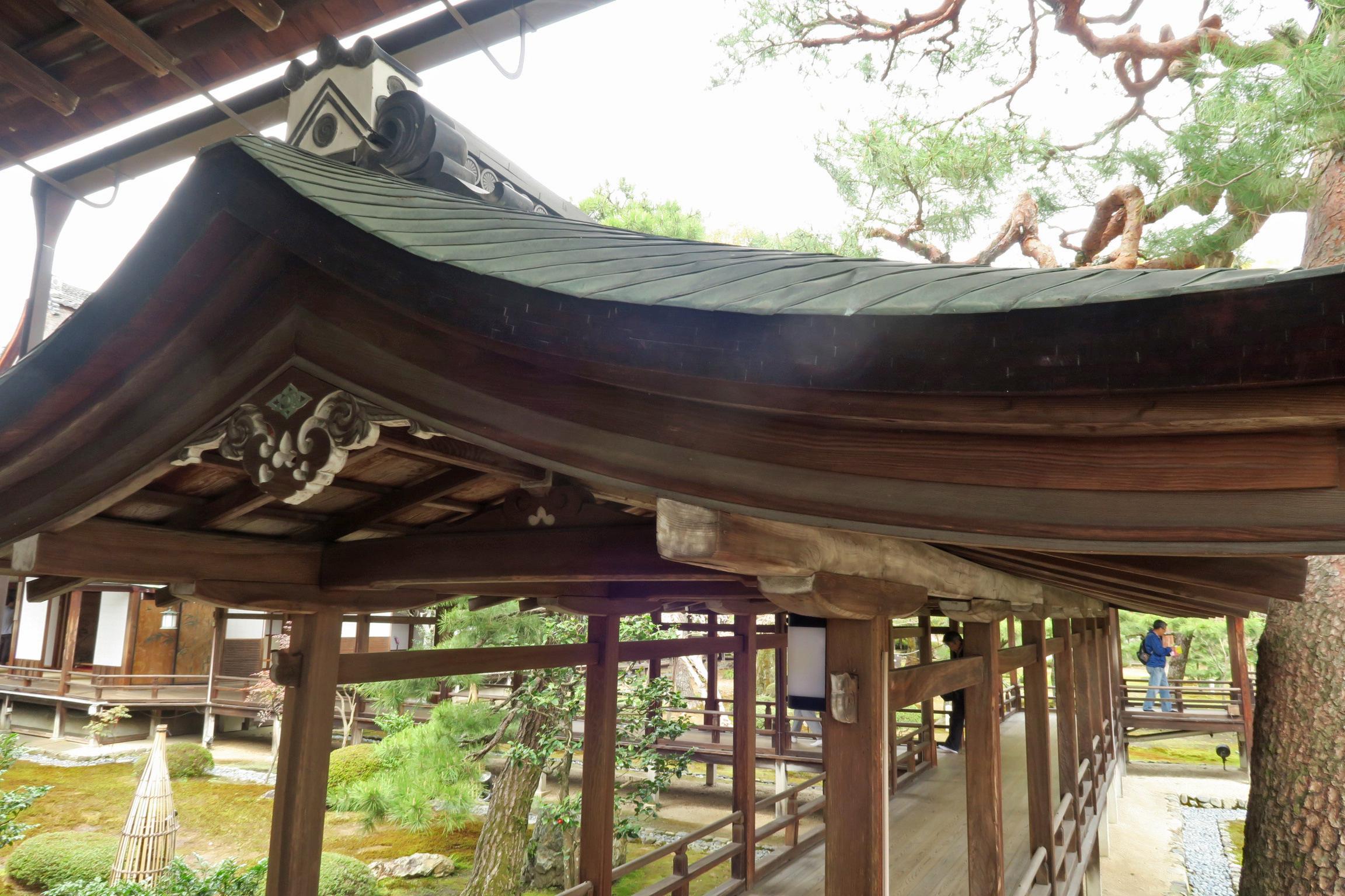 反りの美しい屋根ですね。少しずつ角度を変えて曲線が造られています。