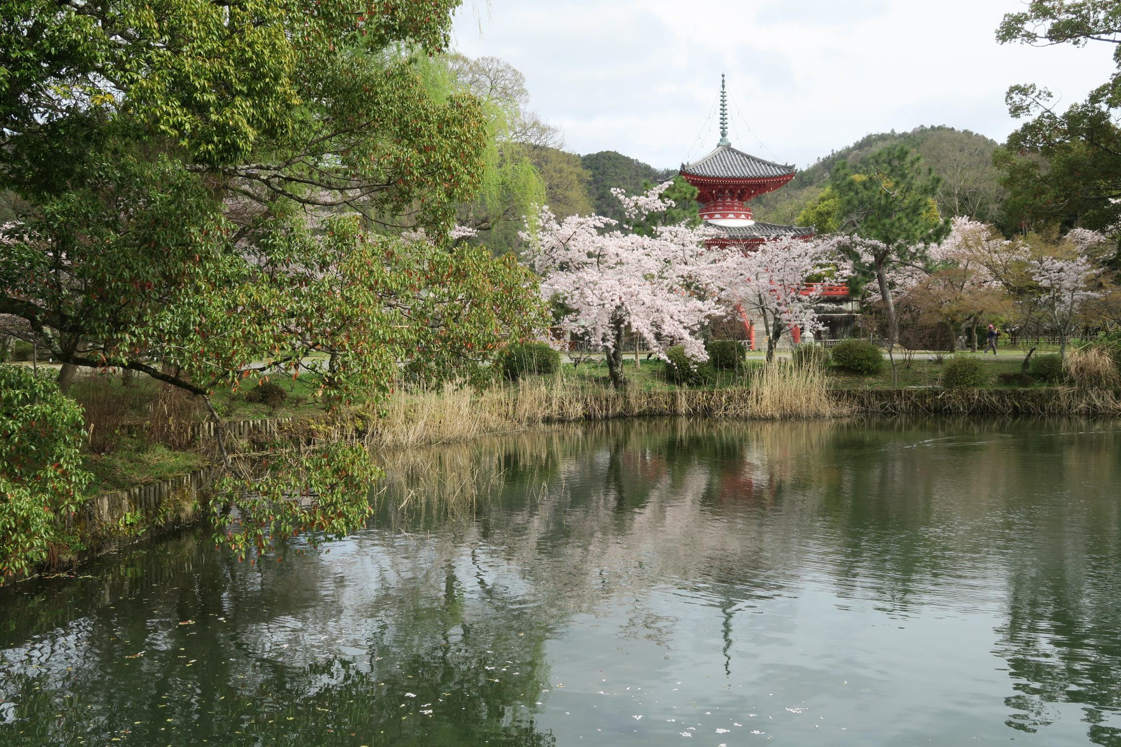 心経宝塔と呼ばれる多宝塔。昭和42年に嵯峨帝心経写経1150年を記念して建てられました。