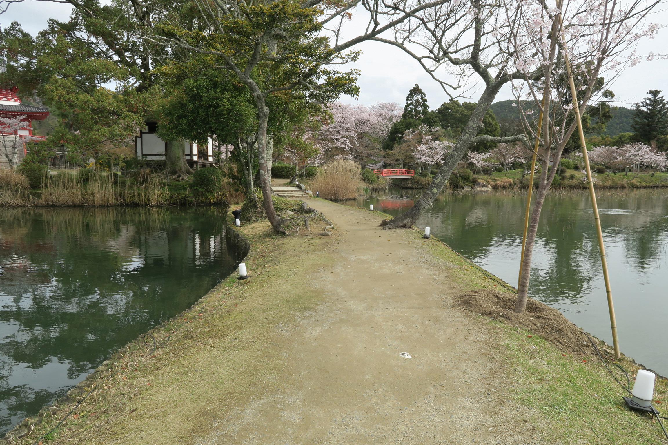のんびりと池のほとりを歩きます。