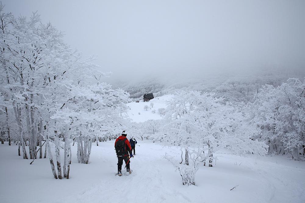 ガスが濃くなってきたからか、山荘に向かう人たちも多くなりました。