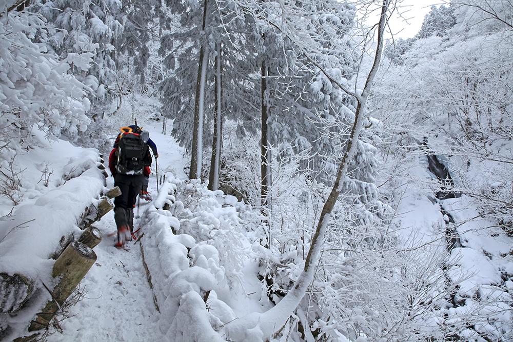 右手に見えるのが明神滝。後ろからお二人に追いつかれ、狭い道でしたが先に行ってもらいました。