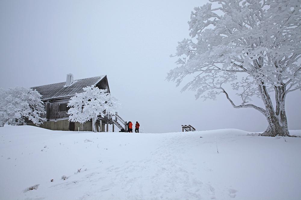 あしび山荘のある山頂に到着。11時でしたが、お腹ペコペコでお昼にしました。