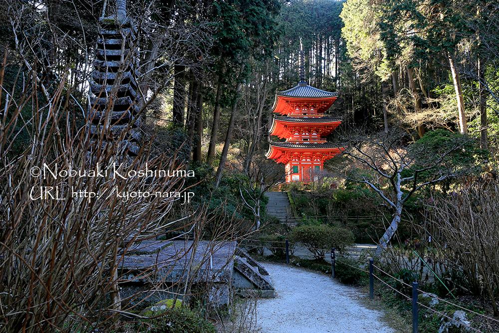 早朝は朝日に照らされた美しい三重塔が望めます。ぜひ朝一番に訪れてみてください!