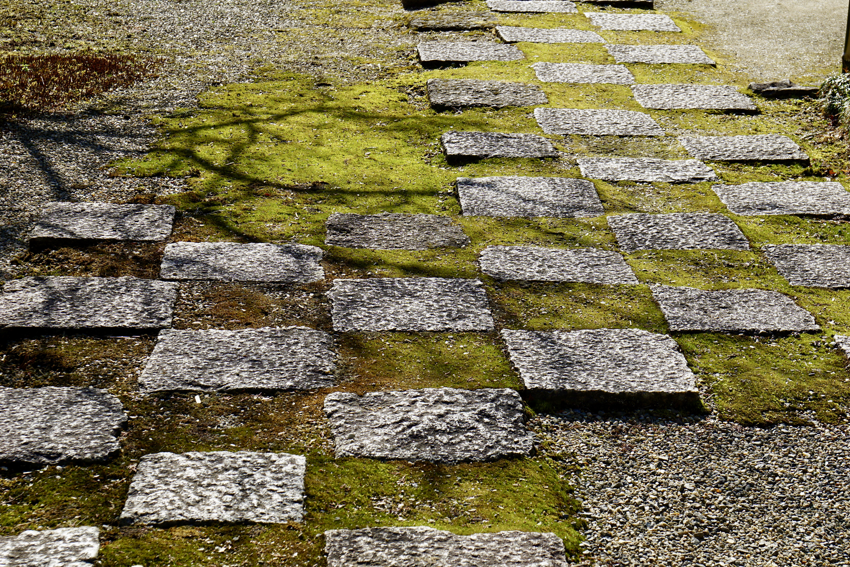 苔と石畳が美しいです。