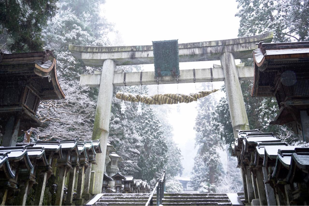 大きな鳥居です。雪と鳥居がとても綺麗でした。