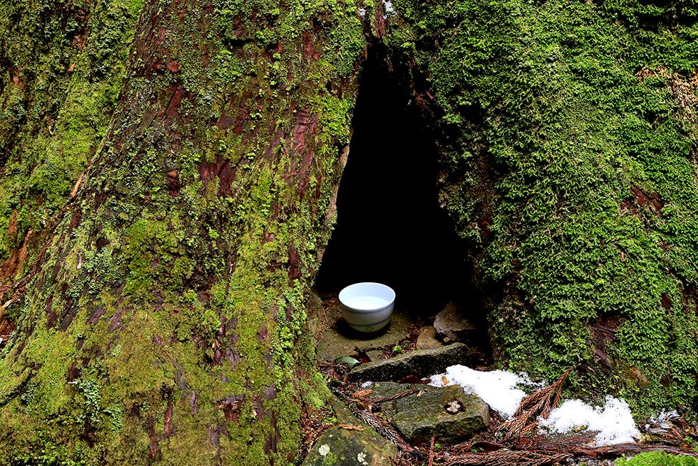 暗いので撮影はできませんでしたが、大木に空いた穴の奥に笑顔のお地蔵さんが。
