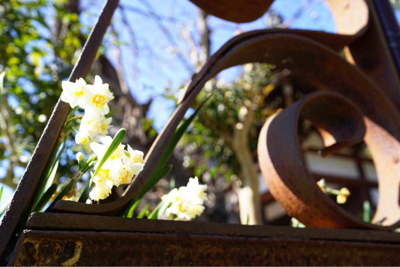 エッフェル塔にも使われた錬鉄製でお花との相性がとても良くていい雰囲気です。