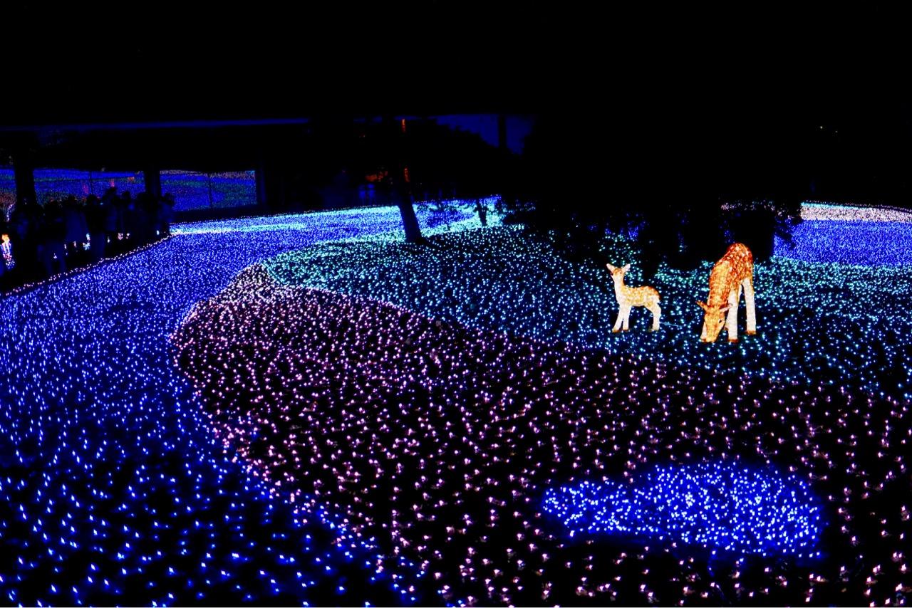鹿のオブジェやハートマークなども。LEDが敷き詰められて見事です。