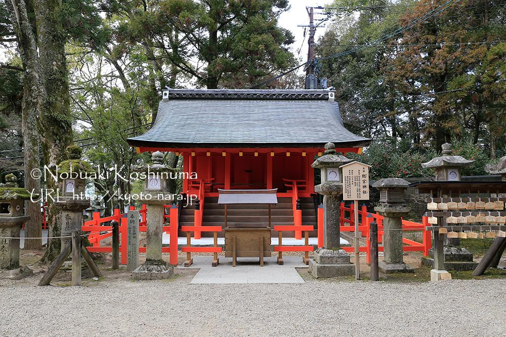 総宮神社(そうぐうじんじゃ)。住居をお授け下さると共に居宅安全、防災、家内の和合をお守りくださる神様