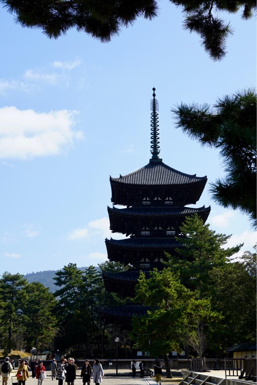 興福寺五重塔 圧倒的な美しさです。