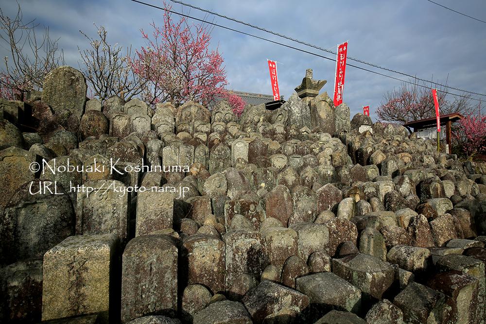 真福寺前にある石仏。