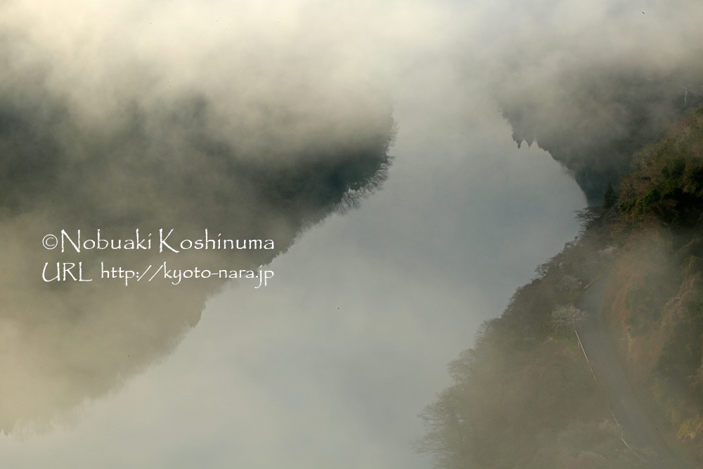 少しずつ雲が消えていき、名張川が姿を現します。