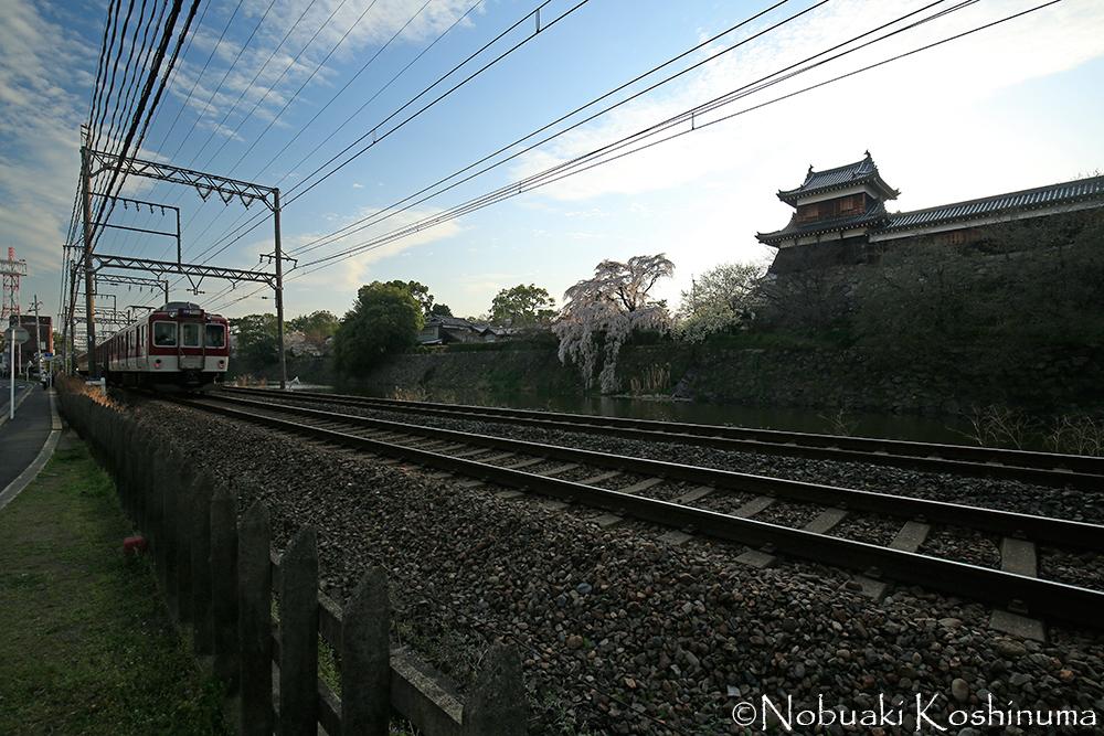 逆光で難しい状況でしたが、電車が通るの待って撮影してみました。