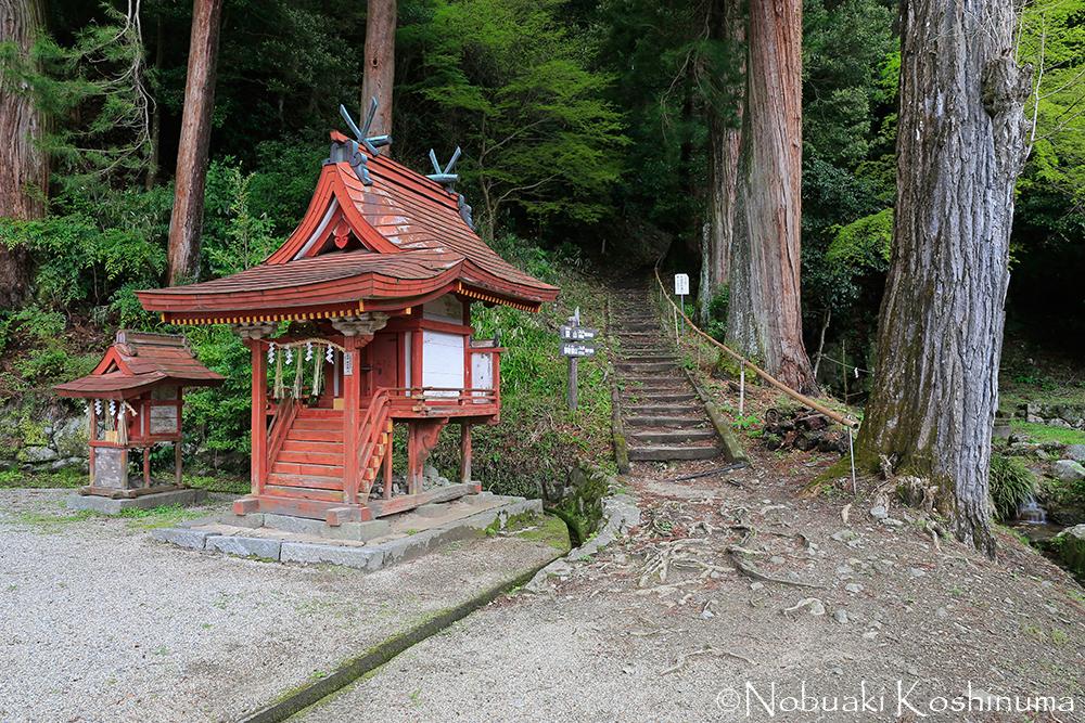 この奥には、藤原鎌足公と中大兄皇子が「大化の改新」の談合をしたという「談い山」があります。