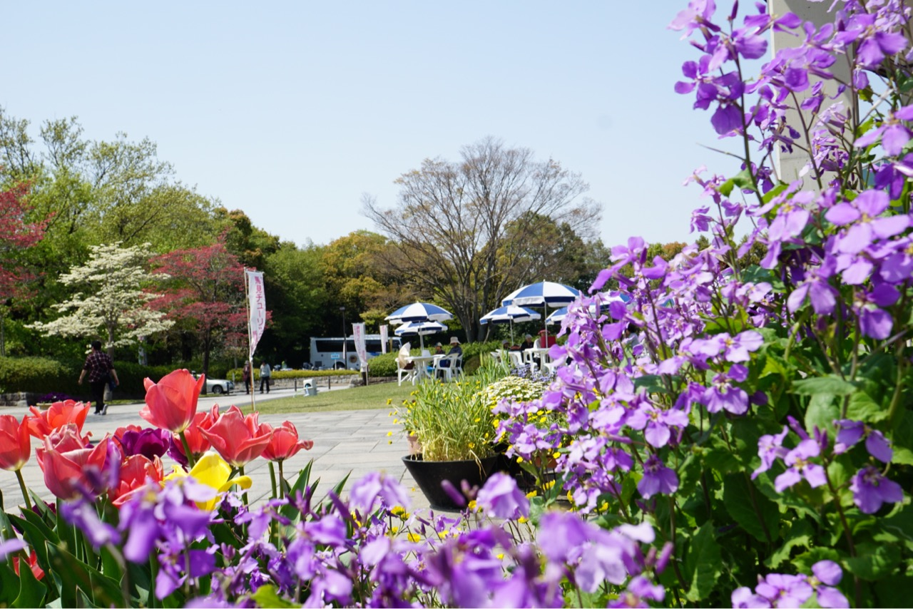 休憩するコーナーは園内にたくさんあります。