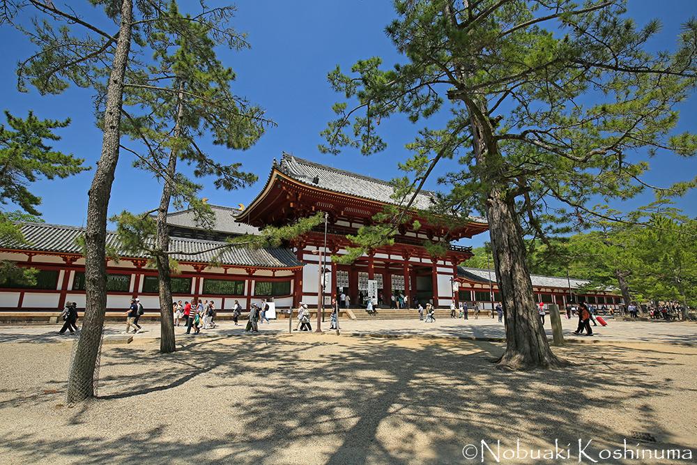 東大寺・中門。左手奥に見えるのが大仏殿。