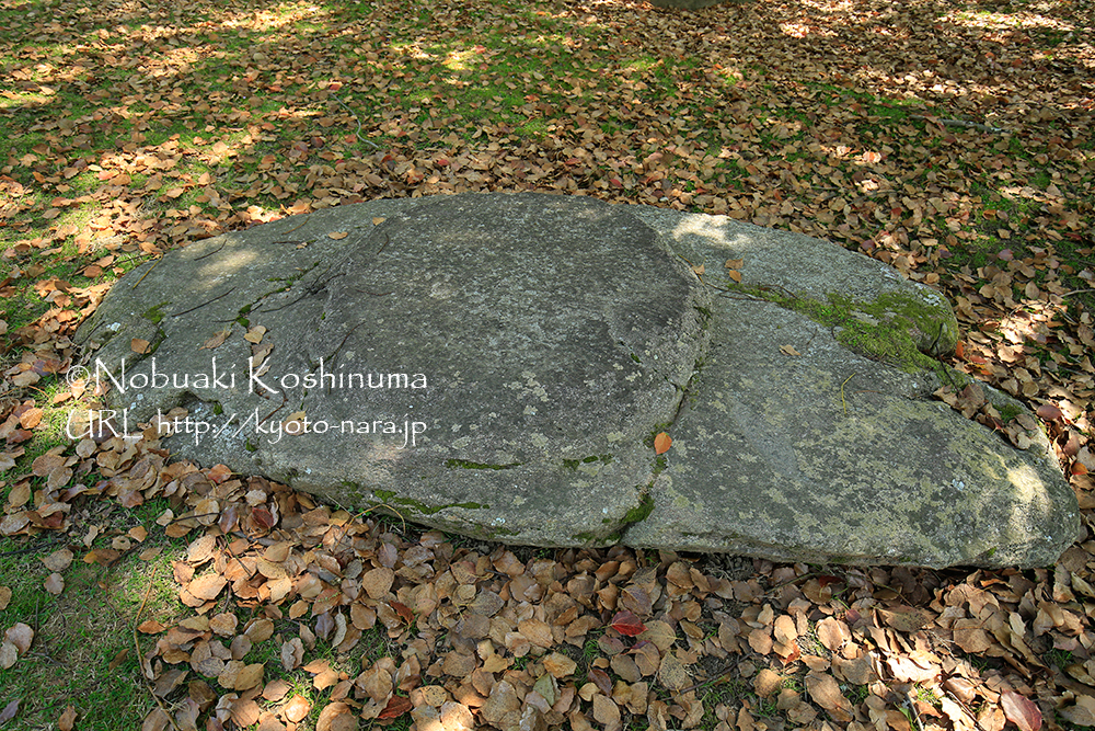 講堂の礎石(そせき)。大きな礎石がたくさん残っています。人も少ないのでお弁当ランチにおすすめです。