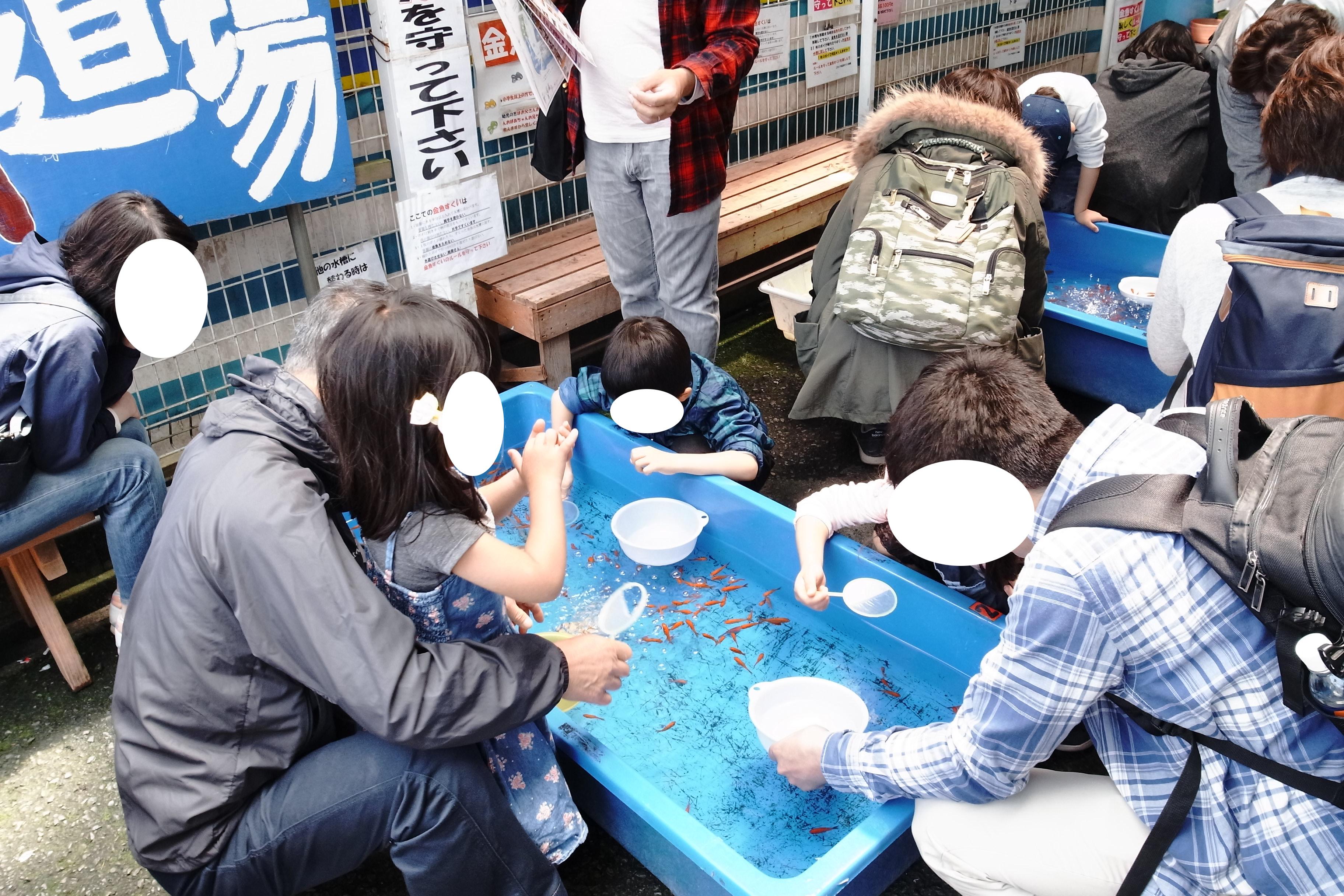 大和郡山で有名な「金魚すくい道場」に行ってきました!11時も過ぎると、ご覧の通り。大混雑でした。