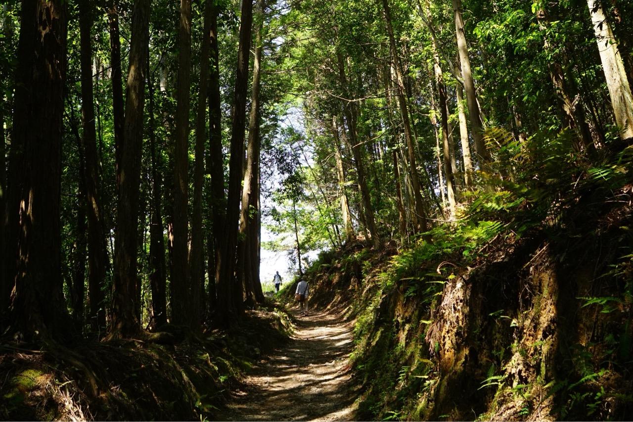山の辺の道を歩いてきました!