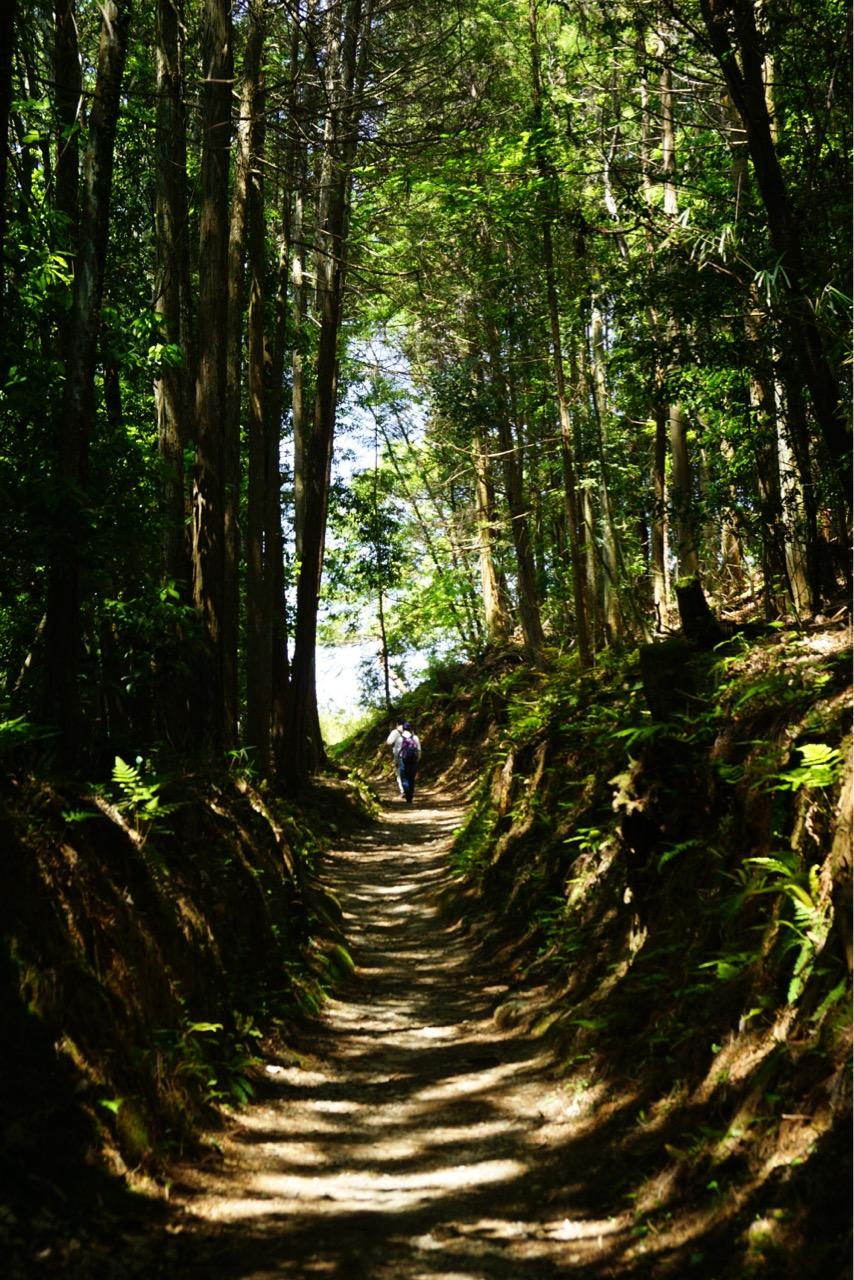 これぞ山の辺の道 とても美しかったです。