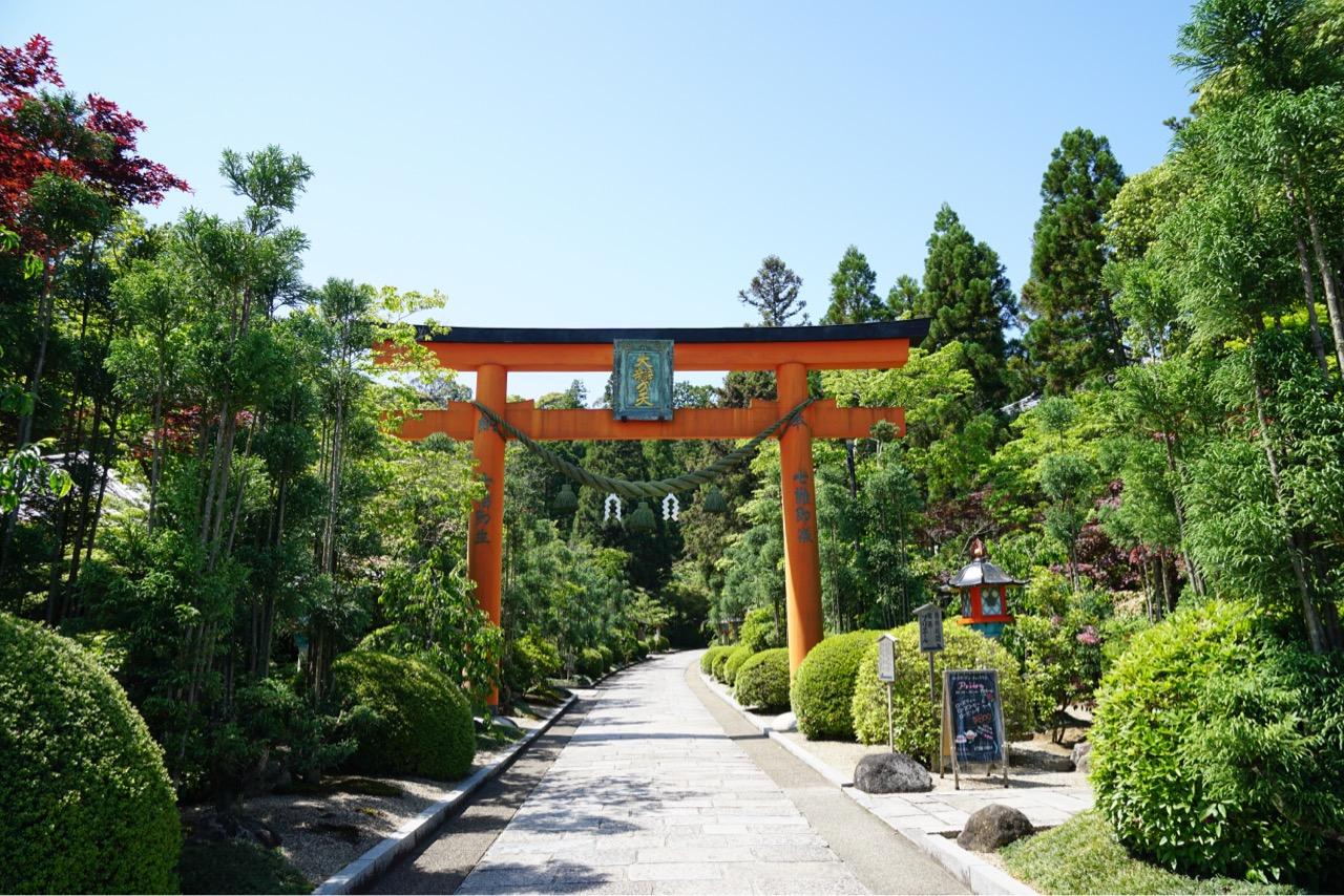 入り口を入ってすぐ右にバラ庭園があります。