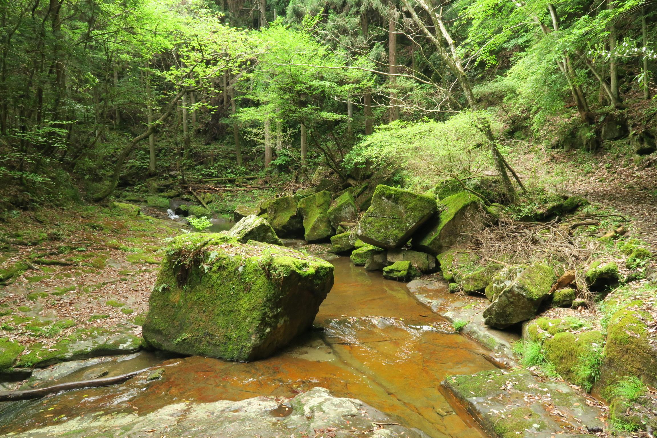 大きな岩がゴロゴロしています。