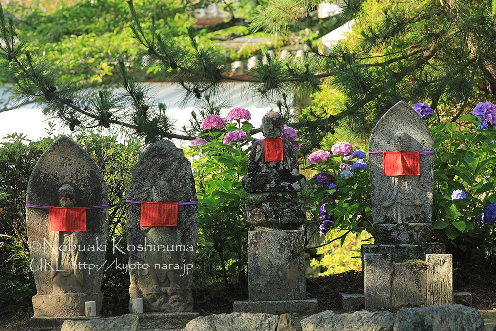 矢田寺には表情豊かな石仏がたくさんあります。